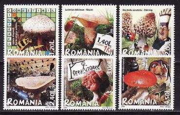 Romania, 2008, Mushrooms, 6v